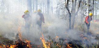 Incendios afectan 83.35 hectáreas