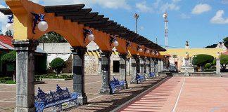 Decomisan dos animales disecados en Omitlán