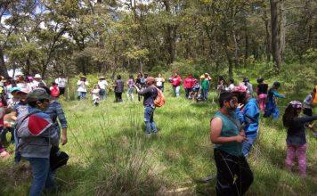 Reforestan niños localidad La Paila con 400 árboles