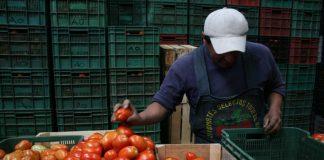 Hidalguenses exportan hacia McAllen, Texas