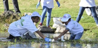 Han atendido 15 colonias con jornadas de limpieza