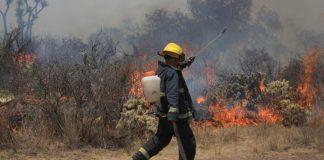 Pastoreo y fumadores, causantes frecuentes de incendios