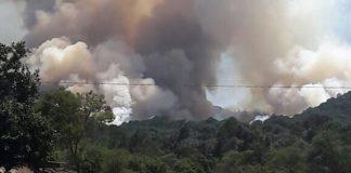 Brigadistas contrarestan incendio forestal en Acaxochitlán