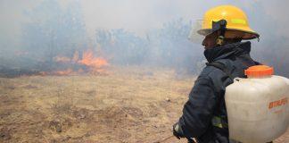 Suman 80 incendios forestales en Hidalgo