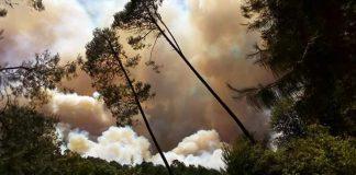 Se registra incendio forestal en cerro de Acaxochitlán