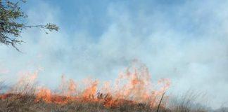 En lo que va del año en Cuautepec se han sucitado 88 incendios