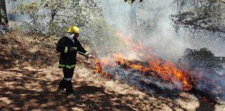 Incendios en Singuilucan han consumido 400 hectáreas