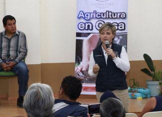 Benefician a familias de Pachuca con talleres de agricultura
