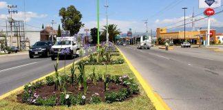 Continúa limpieza de áreas verdes y avenidas