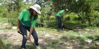 Destinará Conafor a Hidalgo 5 millones de árboles