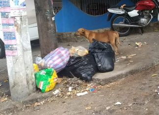 Incrementa volumen de basura en Tulancingo por lluvias