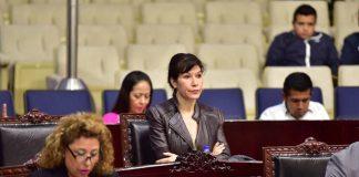 Ejecutivo no puede intervenir en conflicto del Congreso: Perusquía