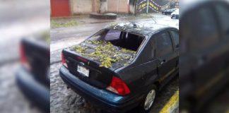 Árboles caídos y sin luz deja frente frío en Acaxochitlán