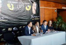 Presentarán obra musical Cats en Pachuca
