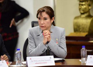 Rechaza Perez Perusquía que propuesta tenga intereses políticos