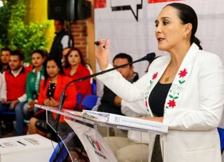 PRI mantiene su visión y rumbo: Erika Rodríguez