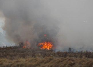 Exhortan a población a evitar incendios forestales