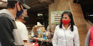 Todos los sectores se sumarán al nuevo gobierno: Guadalupe Muñoz